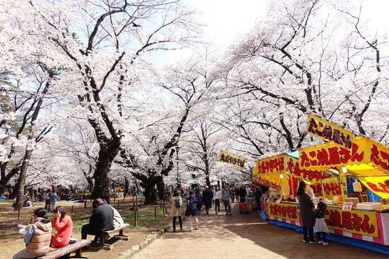 大宮公園 桜 屋台