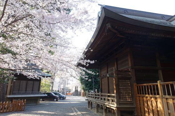 御嶽神社 桜 見頃