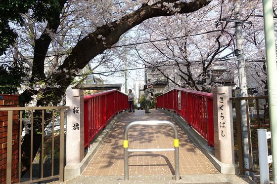 桜坂 桜橋