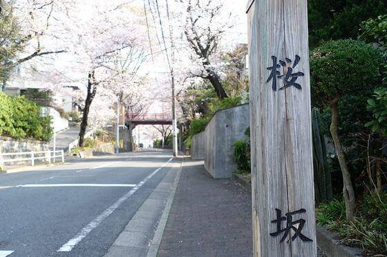 桜坂 場所
