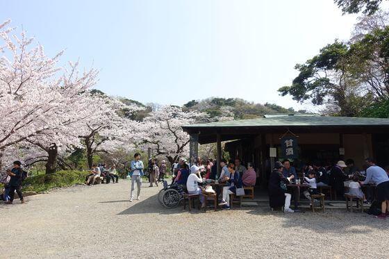 三渓園 茶屋