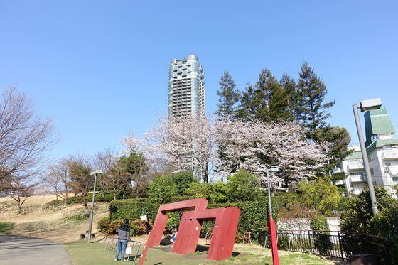 ミッドタウン 檜町公園 桜