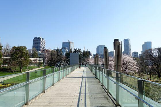 ミッドタウン 桜