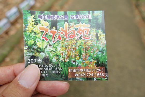 町田えびね苑 料金