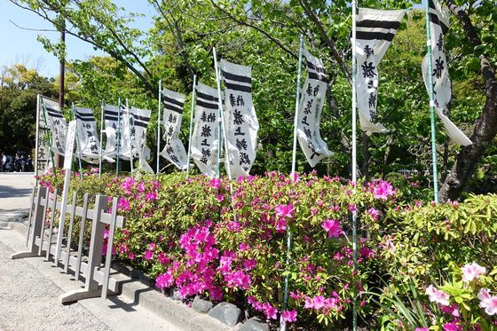 鶴岡八幡宮 躑躅