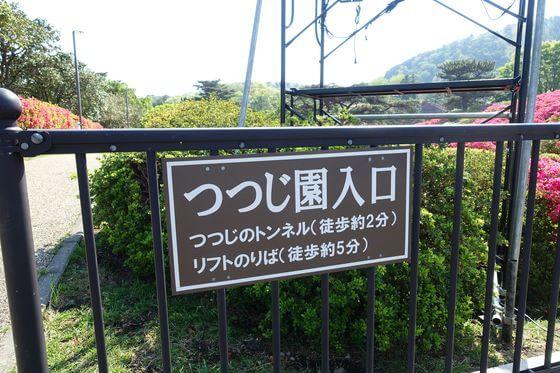 小室山公園 つつじ園