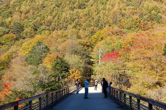 西沢渓谷 ネトリ橋