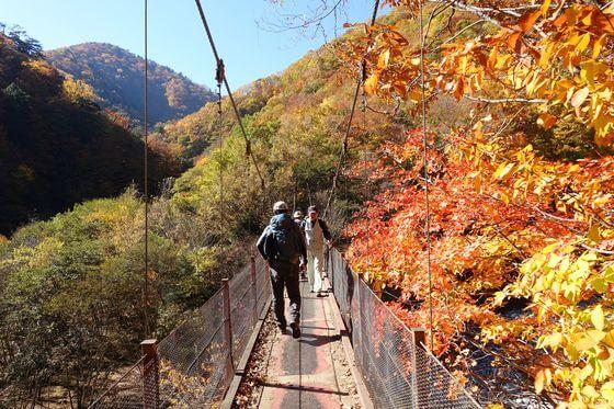 西沢渓谷 二俣吊り橋