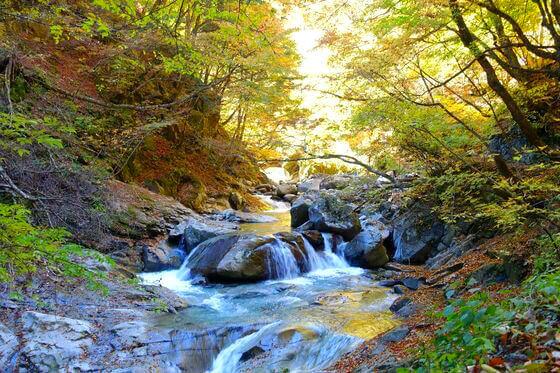 西沢渓谷 滝 紅葉