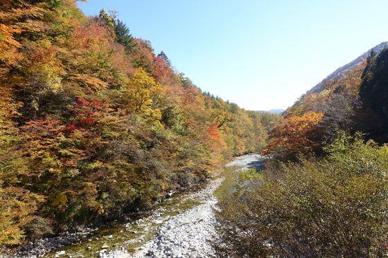 西沢渓谷 紅葉