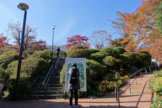 箱根強羅公園 紅葉