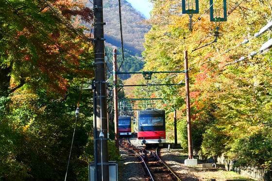 箱根登山ケーブルカー 紅葉