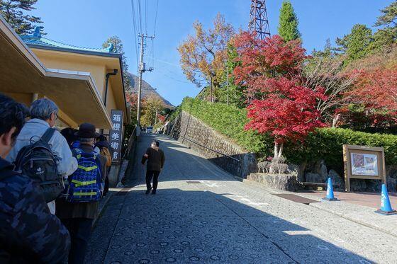 箱根美術館 紅葉 混雑
