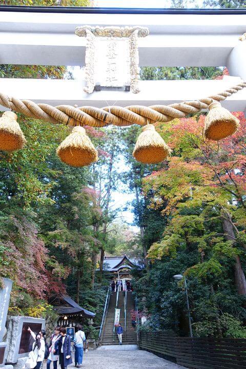 宝登山神社 鳥居 紅葉