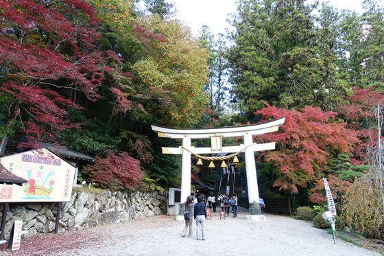 宝登山神社 紅葉 ライトアップ