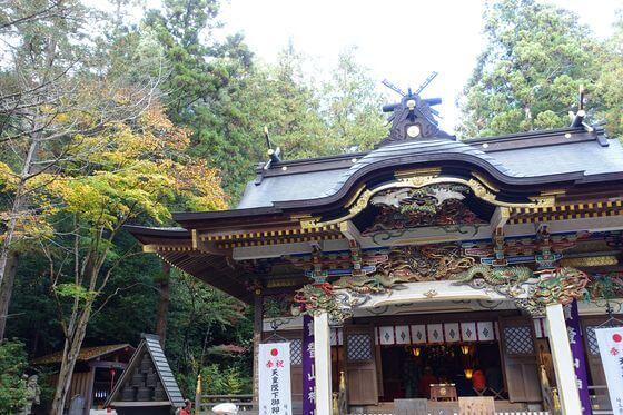 宝登山神社 本殿 紅葉