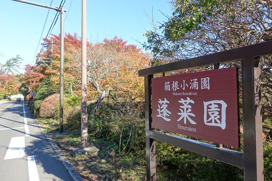 箱根 蓬莱園 紅葉