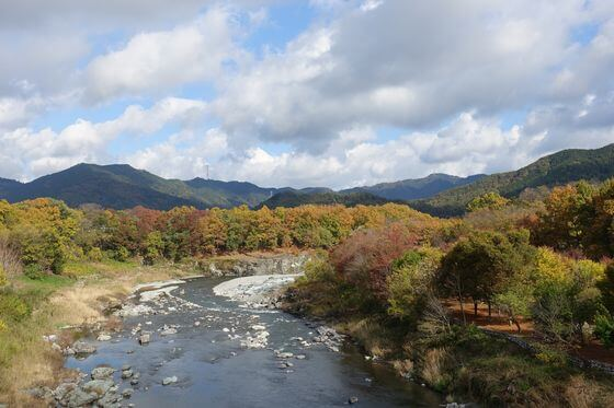 金石水管橋 紅葉