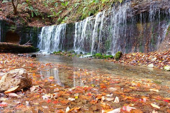 白糸の滝 軽井沢 紅葉 状況