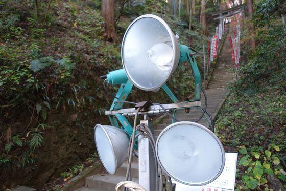 東郷公園 紅葉 ライトアップ