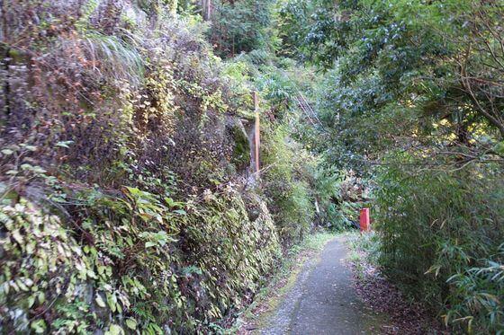 堂ヶ島遊歩道