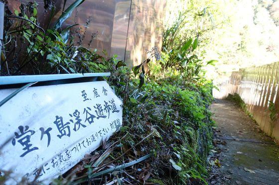 堂ヶ島渓谷遊歩道 ハイキング