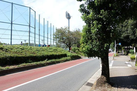 府中郷土の森 第一野球場