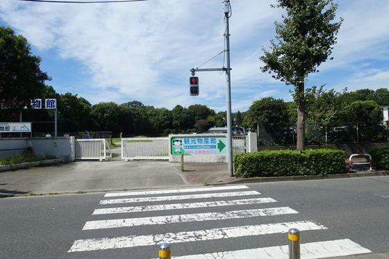 郷土の森入口交差点