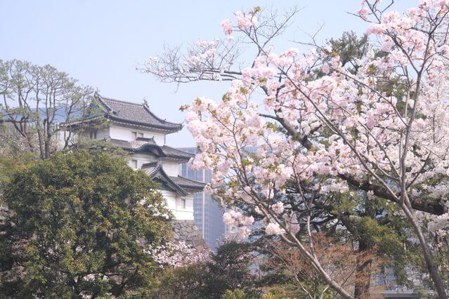 富士見櫓 皇居 桜