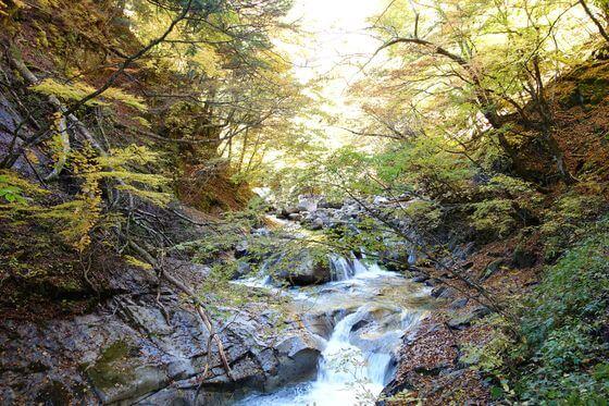森林浴の森百選 西沢渓谷