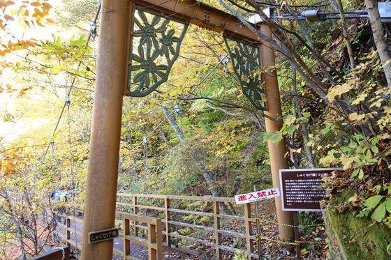 しゃくなげ橋 西沢渓谷