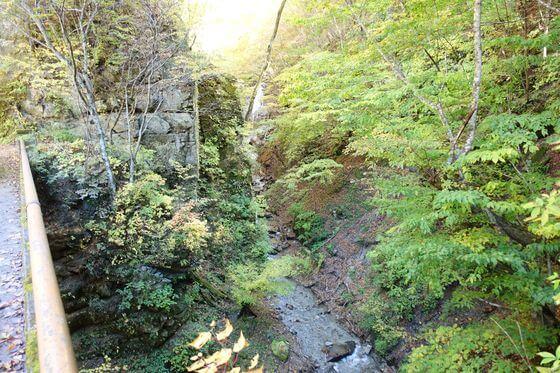 西沢渓谷 ナレイの滝