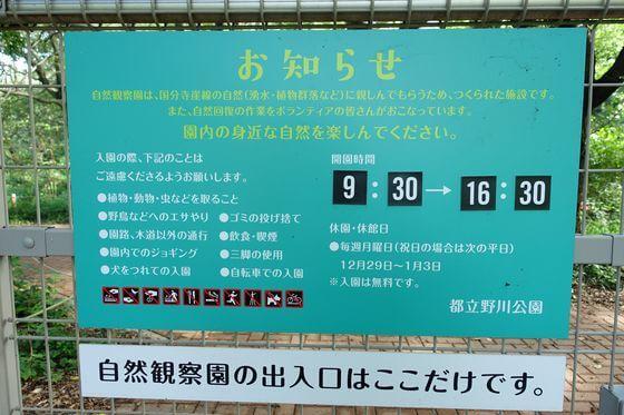 野川公園 自然観察園 時間