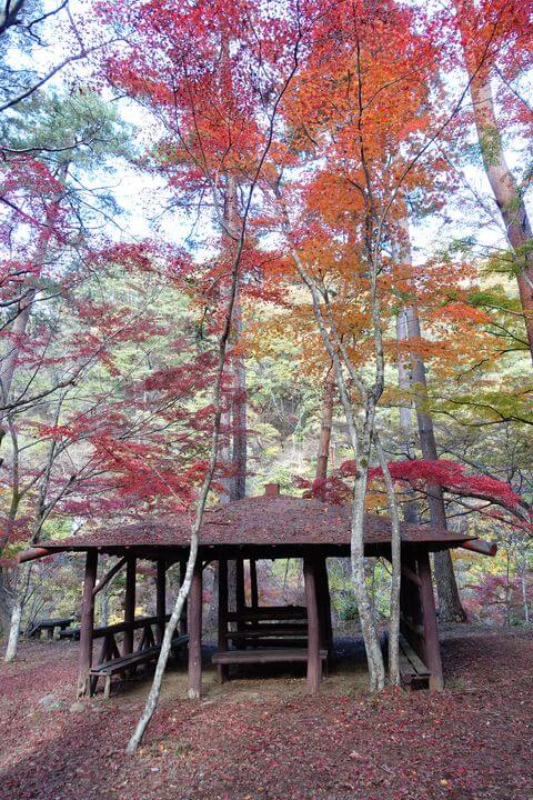 昇仙峡 天鼓林 紅葉