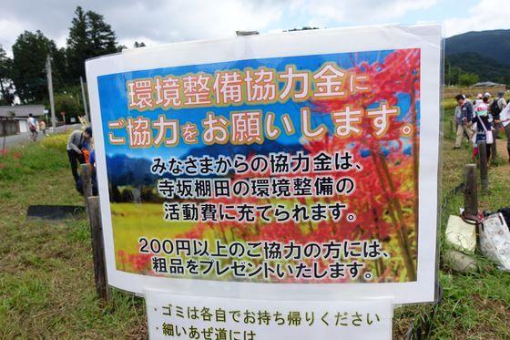 寺坂棚田 彼岸花 料金