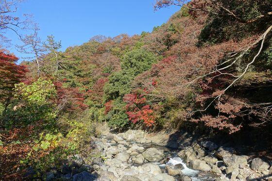 堂ヶ島渓谷遊歩道 紅葉