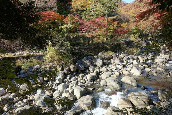 堂ヶ島渓谷遊歩道 ハイキング 紅葉
