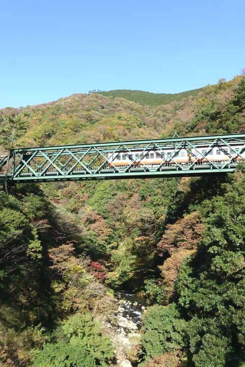 出山の鉄橋 紅葉