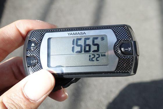 日向和田駅 梅の公園 距離