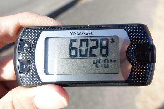 西松井田駅 ろうばいの郷 距離