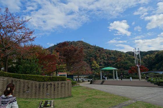 相模湖公園 紅葉