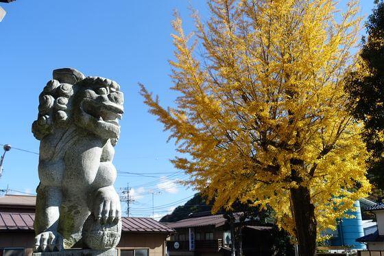 三嶋神社 猿橋 紅葉 見頃