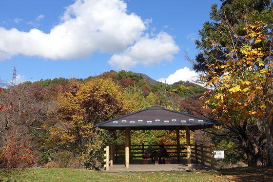 猿橋公園 紅葉