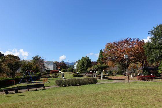 猿橋近隣公園 紅葉