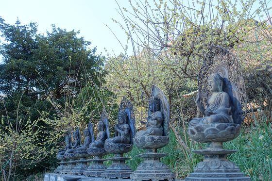 清水寺 十三仏尊像
