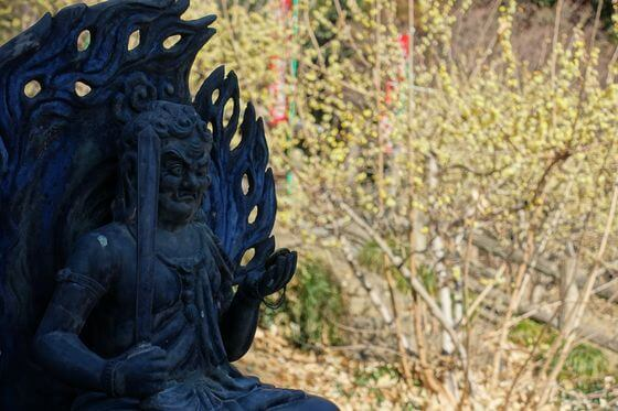 清水寺 栃木 十三仏尊像