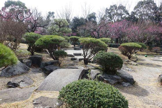 青葉の森公園 日本庭園
