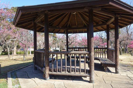 青葉の森公園 梅園 東屋
