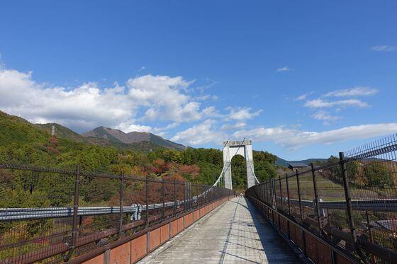 秦野戸川公園 吊り橋