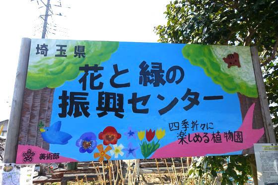 花と緑の振興センター アクセス